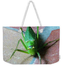 Weekender Tote Bag featuring the photograph Little Grasshopper by Denise Fulmer