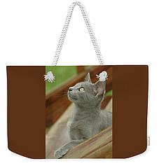 Little Gray Kitty Cat Weekender Tote Bag