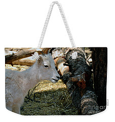 Weekender Tote Bag featuring the photograph Little Kid by Debby Pueschel