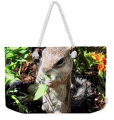 Little Nibbler Weekender Tote Bag