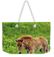 Weekender Tote Bag featuring the photograph Little One by Joan Davis