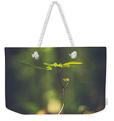 Weekender Tote Bag featuring the photograph Little One by Shane Holsclaw