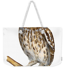 Little Owl Or Minerva's Owl Athene Noctua - Goddess Of Wisdom- Chouette Cheveche- Nationalpark Eifel Weekender Tote Bag