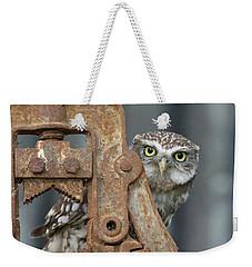 Little Owl Peeking Weekender Tote Bag