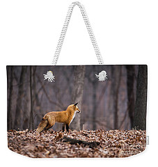 Little Red Fox Weekender Tote Bag by Andrea Silies