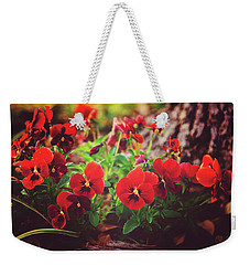 Weekender Tote Bag featuring the photograph Little Red Pansies by Toni Hopper