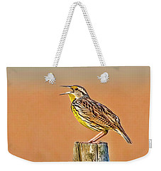 Little Songbird Weekender Tote Bag by HH Photography of Florida