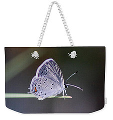 Little Teeny - Butterfly Weekender Tote Bag
