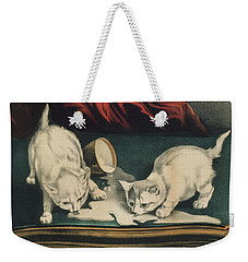 Weekender Tote Bag featuring the painting Little White Kitties Into Mischief                                                      by Matthias Hauser