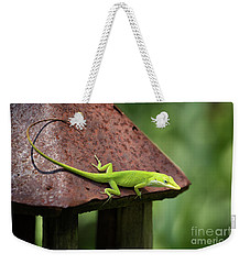 Lizard On Lantern Weekender Tote Bag