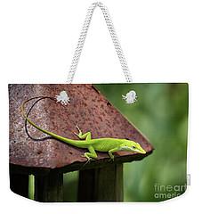 Lizard On Lantern Weekender Tote Bag by Stephanie Hayes