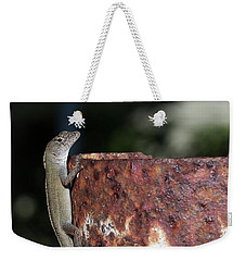 Weekender Tote Bag featuring the photograph Lizzy by Richard Rizzo