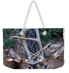 Locking Horns - Well Antlers Weekender Tote Bag