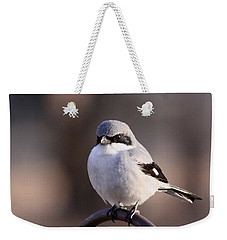 Loggerhead Shrike - Smokey Weekender Tote Bag