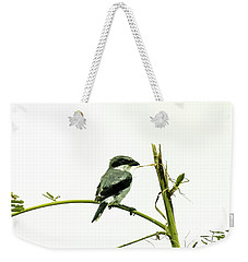 Weekender Tote Bag featuring the photograph Loggerhead Shrike And Mantis by Robert Frederick