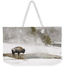 Weekender Tote Bag featuring the photograph Bison Keeping Warm by Gary Lengyel