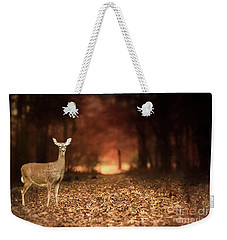 Weekender Tote Bag featuring the photograph Lone Doe by Darren Fisher