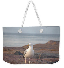 Weekender Tote Bag featuring the photograph Lone Gull by  Newwwman