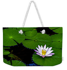 Weekender Tote Bag featuring the photograph Lone Lily by Ken Frischkorn