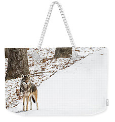 Weekender Tote Bag featuring the photograph Lone Winter Coyote by Andrea Silies