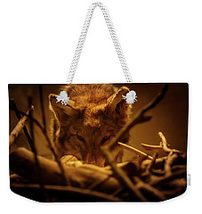 Lone Wolf In The Museum Weekender Tote Bag