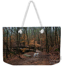 Weekender Tote Bag featuring the photograph Lonely Hound by Barbara Bowen