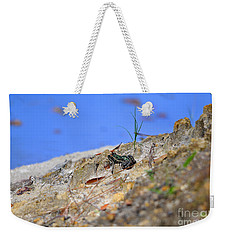 Weekender Tote Bag featuring the photograph Lonely Leopard by Al Powell Photography USA