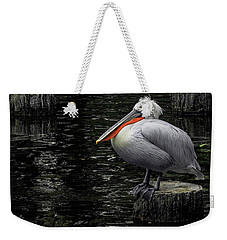 Weekender Tote Bag featuring the photograph Lonely Pelican by Pradeep Raja Prints