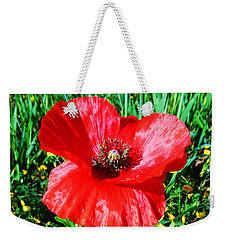 Lonely Poppy Weekender Tote Bag by Don Pedro De Gracia