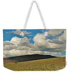 Lonely Tree Weekender Tote Bag by Michele Penner