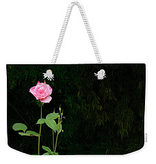 Weekender Tote Bag featuring the photograph Long Stemmed Rose by Jean Noren