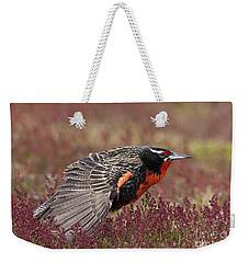 Long-tailed Meadowlark Weekender Tote Bag