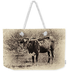 Longhorn #95 - Sepia #2 Weekender Tote Bag by Tim Stanley