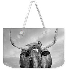 Weekender Tote Bag featuring the photograph Longhorn Respite by Robin-Lee Vieira