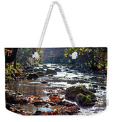 Weekender Tote Bag featuring the photograph Longing For Home by Karen Wiles