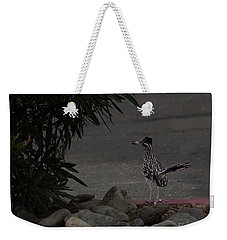Look Out Wile E Coyote Weekender Tote Bag by Anne Rodkin