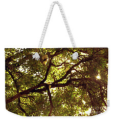 Weekender Tote Bag featuring the photograph Look Up by Cassandra Buckley