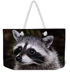 Weekender Tote Bag featuring the photograph Look Who Came For Dinner by Jordan Blackstone