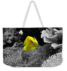 Weekender Tote Bag featuring the photograph Looking At You by Deniece Platt