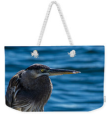 Looking For Lunch Weekender Tote Bag by Marvin Spates