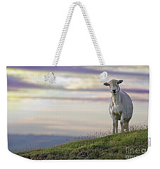 Looking From The Above Weekender Tote Bag