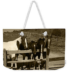 Looking Over The Fence Weekender Tote Bag
