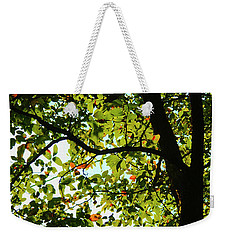 Looking Thru The Leaves Three Weekender Tote Bag