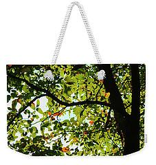 Looking Thru The Leaves Three Weekender Tote Bag