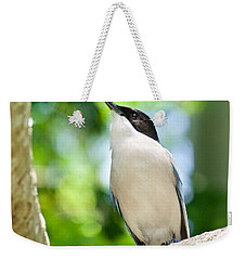 Weekender Tote Bag featuring the photograph Looking Up by Judy Kay