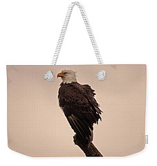 Weekender Tote Bag featuring the photograph Looks Like Reign by Robert Geary