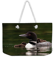Loon Chicks Weekender Tote Bag