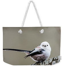 Weekender Tote Bag featuring the photograph Loong Tailed by Torbjorn Swenelius