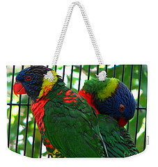 Weekender Tote Bag featuring the photograph Lory by Greg Patzer