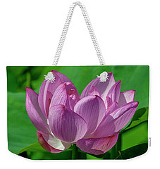 Weekender Tote Bag featuring the photograph Lotus Beauty--buxom Beauty I Dl0089 by Gerry Gantt
